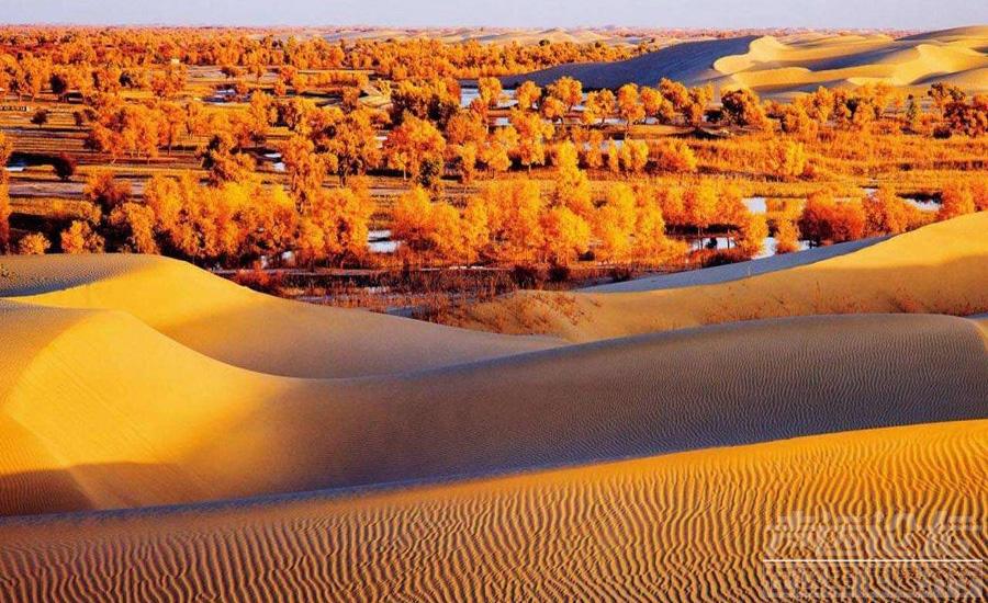 14-塔克拉玛干沙漠2.jpg