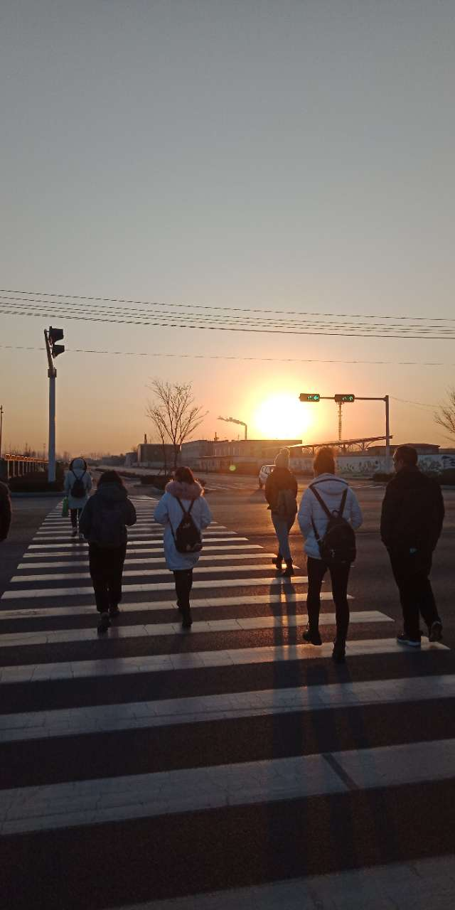 2021年2月18日济宁高新区,早晨阳光下的腊梅花-1.jpg