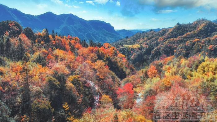 重庆武隆 登高赏秋 暖心相伴迎重阳-3.png